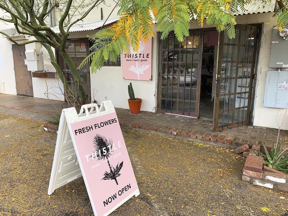 Thistle Tucson La Buena Peach Properties